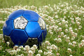 Blue Soccer Ball in Grass and Flowers — Zdjęcie stockowe