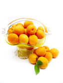Apricots in a basket — Stock Photo