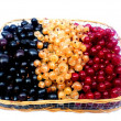 Stock Photo: Basket with berries