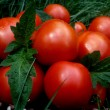 Stock Photo: Red tomatoes