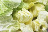 Close-up of iceberg lettuce — Stock Photo