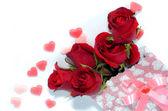 Beautiful rose isolated on white background — Photo