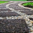 Path through landscaped park — Stock Photo #38594719