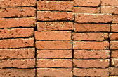Laterite brick wall. — Stock Photo