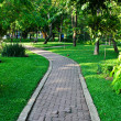 Path through landscaped park — Stock Photo #39990785