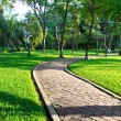 Path through landscaped park — Stock Photo #39991043
