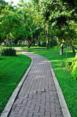 Path through the landscaped park — Stok fotoğraf