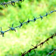 Barbed wire — Stock Photo #40397761