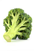 Fresh raw broccoli isolated on white background — 图库照片