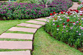 walkway in the flowers garden — Stock Photo