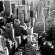 New York city in black and white — Stock Photo #29101789