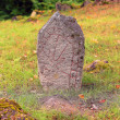 Runestone in meadow — Stockfoto #33328357