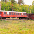 Abandoned train cars — Stock Photo