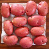 在厨房的桌子上的红色土豆 — 图库照片