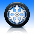 Snow tire — Foto Stock