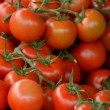 Stock Photo: Little tomatoes