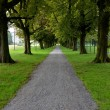 Stock Photo: Path