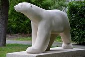White bear — Stock Photo
