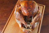 Roasted Whole Turkey Hot Out of the Oven — Stock Photo