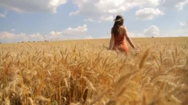 Girl in field — Stock Video