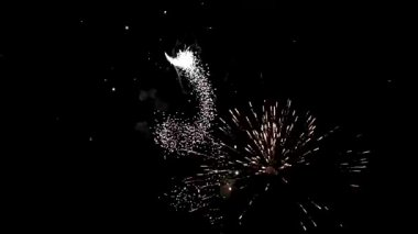 4th of July Fireworks — Stock Video