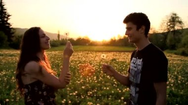 Cute Young Couple Blowing Dandelions Laughing Sunset Summer — Stock Video