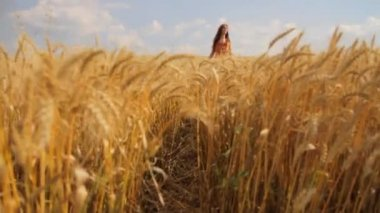 Beauty Hippie Girl Passing Beautiful Nature Summer Field HD — Stock Video