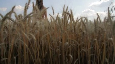 Sun Hope Rising Young Woman Standing Wheat Field Happiness — Stock Video