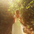 Bride Dress Nature Sunlight — Stock Video #36180329