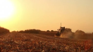 Field Harvester Combine — Stock Video