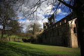 Kirkstall Abbey and Grounds — Stock Photo