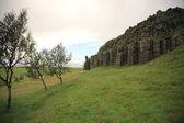 Dverghamrar basalt columns — Stock Photo