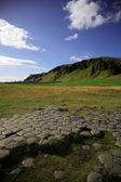 Kirkjugolf basalt columns — Stock Photo
