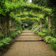 Stock Photo: English Country Garden