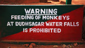 Do not feed the monkeys sign — Stock Photo