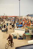 Busy Essaouira harbour — Stock Photo