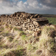 Sunlit dry stone wall — Stock Photo