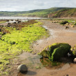 Beach at Robin Hoods Bay — Stock Photo #30989689