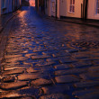 Wet cobbles of Whitby — Stock Photo #30989941