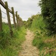 Stock Photo: English Countryside Path