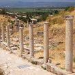 Stock Photo: Marble Road Ephesus Turkey