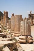 Columns of the Roman Basilica Ephesus — Stock Photo