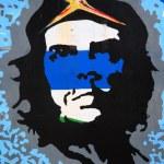 Che Guevara picture — Stock Photo #31235545