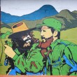 Постер, плакат: Che Guevara and El Castro