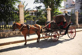 Horse and cart in Havana — Stock Photo