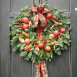 Red apple and chillies wreath — Stock Photo