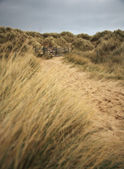 Bamburgh beach path — Stock Photo