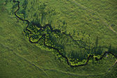 River meandering across Masai Mara — Stock Photo