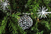 Close up of Christmas decorations — Stock Photo
