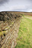 Dry stone wall in Cumbria — Stock Photo